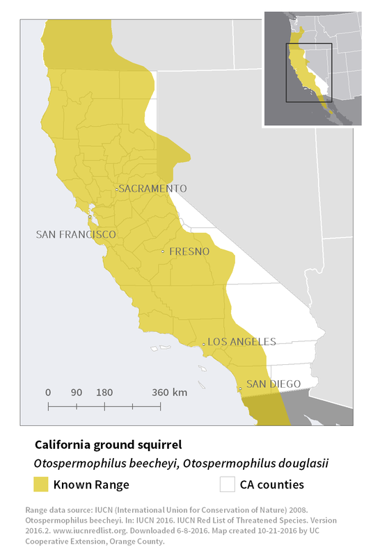 Range map of California ground squirrel
