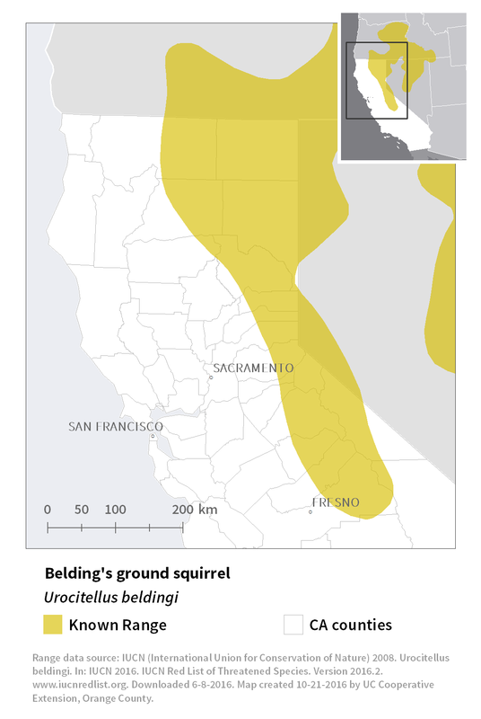 Range map of Belding's ground squirrel